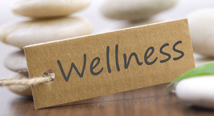 what are wellness services